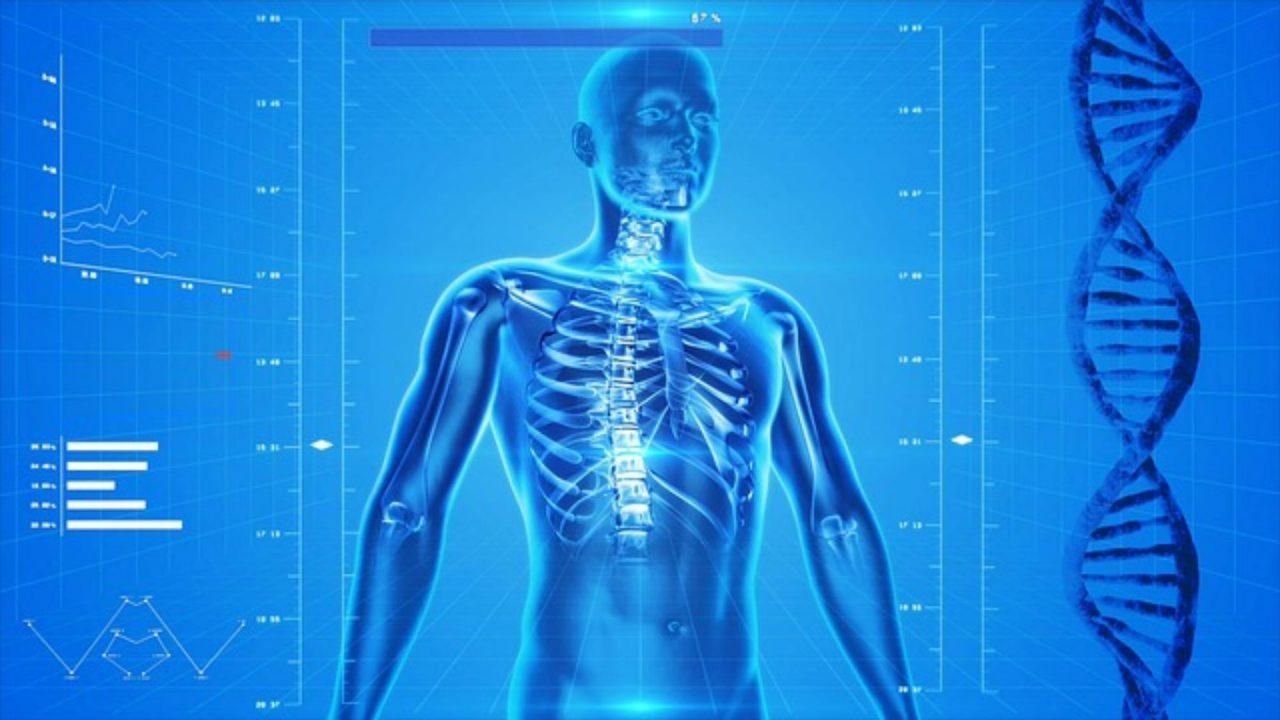 co brać na ból mięśni
